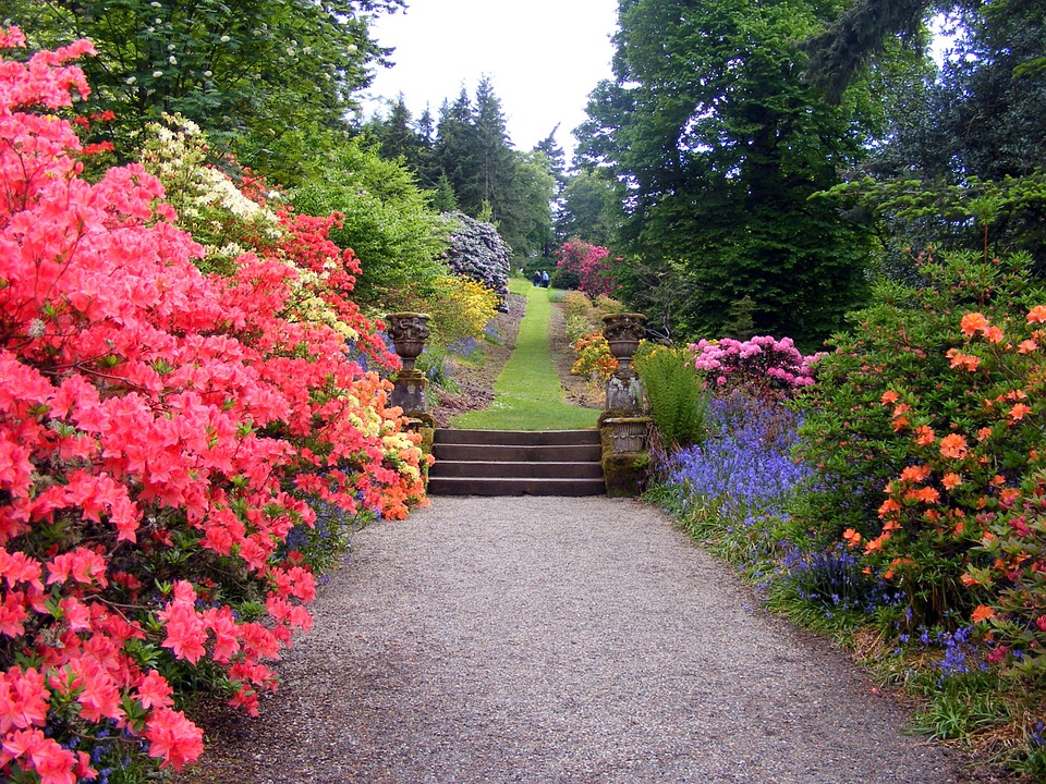3 Ways to Simplify Your Landscaping Maintenance in Franklin Stormberg Group Blog