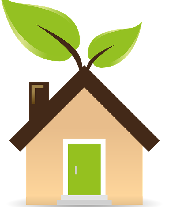 Going Green: 4 Eco-Friendly Home Improvements